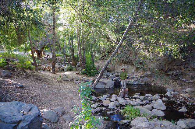 Reyes Peak Campground - Los Padres | Backpacking, Camping
