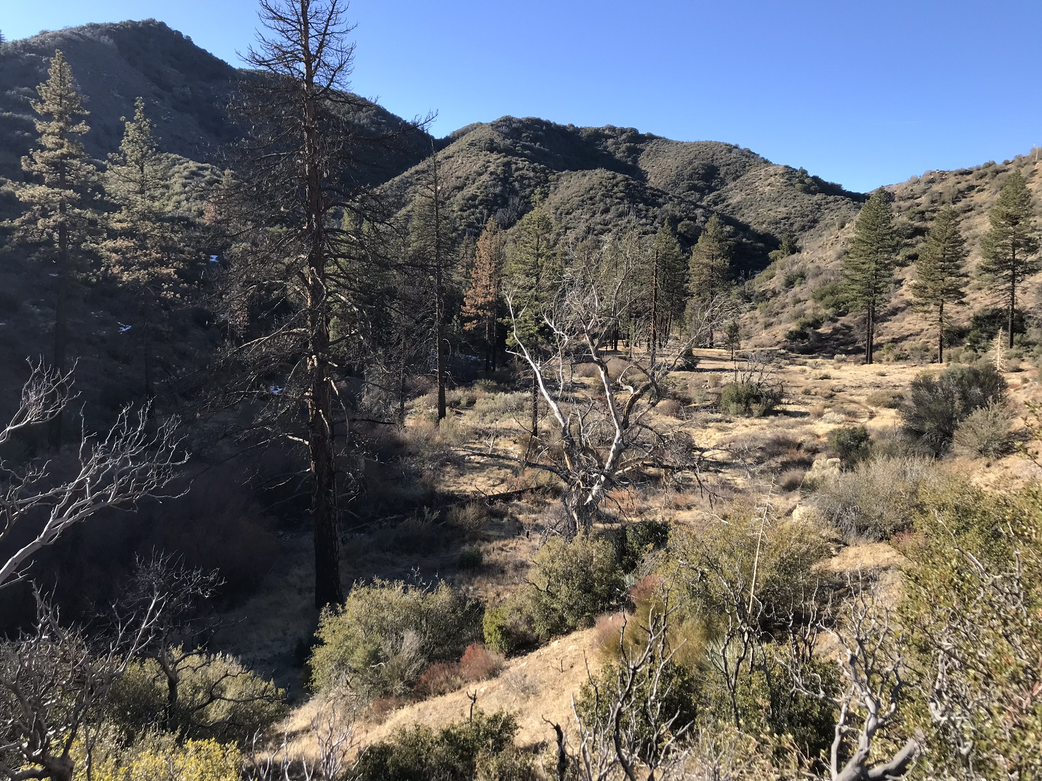 Snowy OHV Trail - Hiking and Backpacking In The Los Padres ...