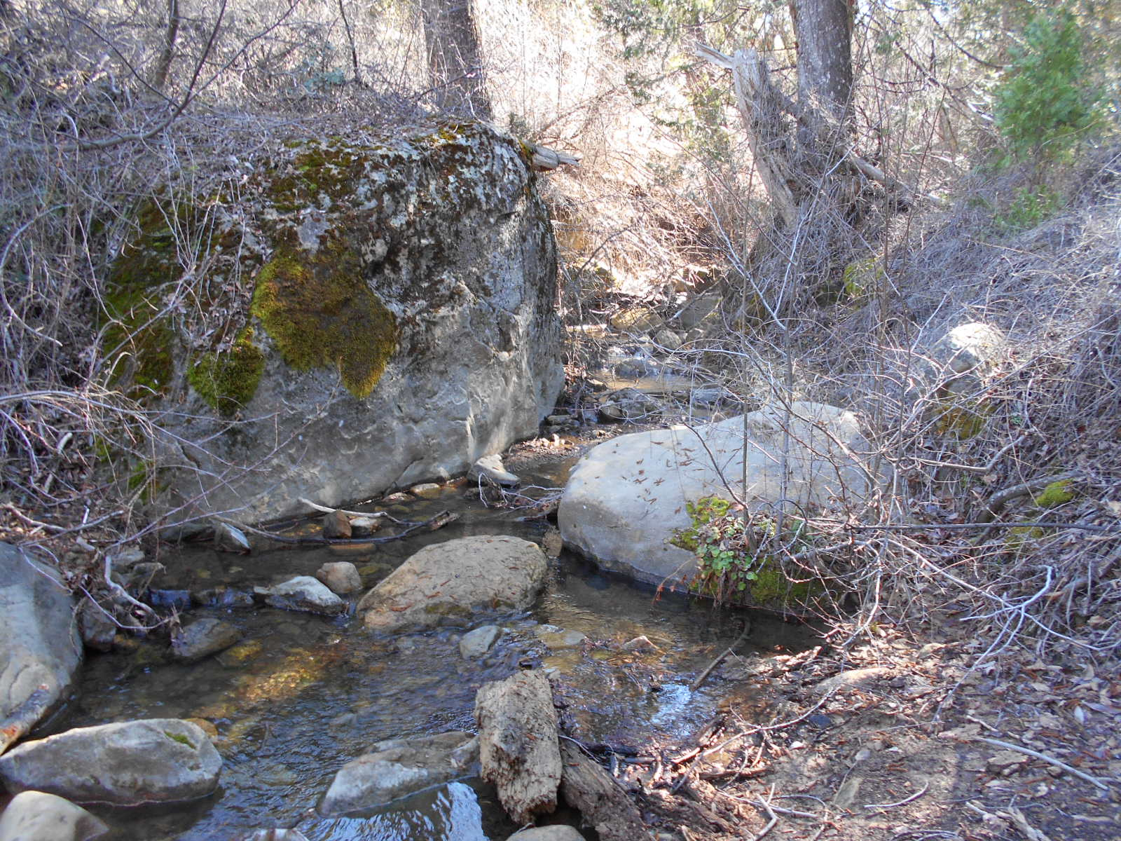 Upper Reyes Camp - Los Padres | Backpacking, Camping, MTB, OHV, and