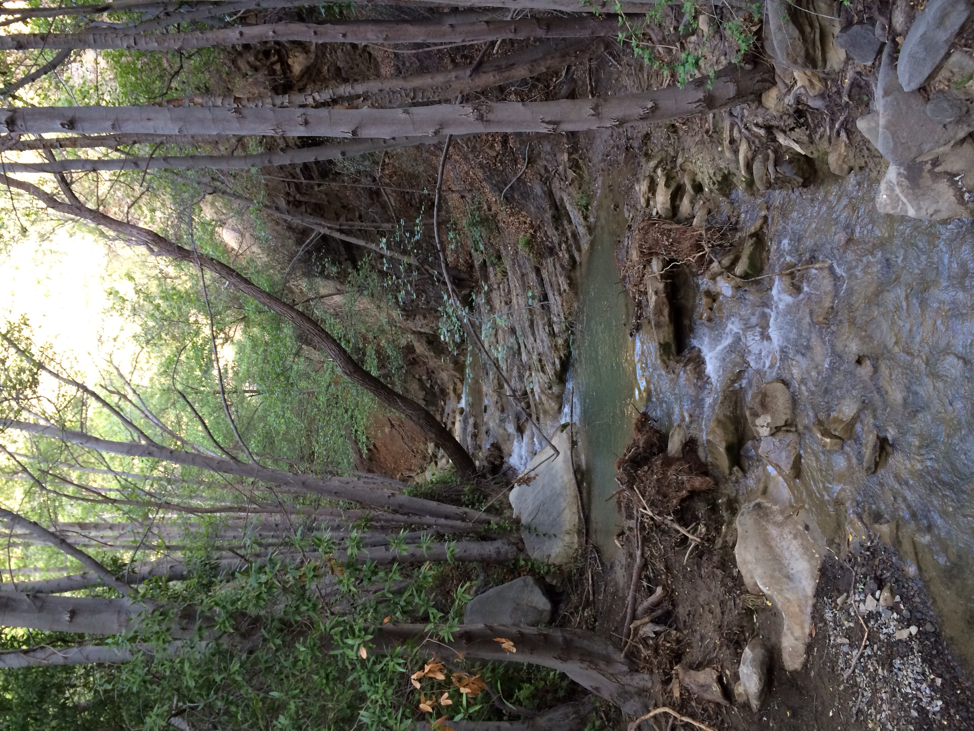 37213575222 North Fork Matilija Trail - Hiking and Backpacking In The Los Padres ...