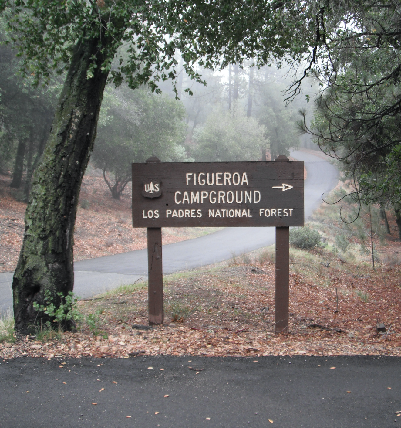 Camping Cabins National Forest Nm: Figueroa Campground - Los Padres